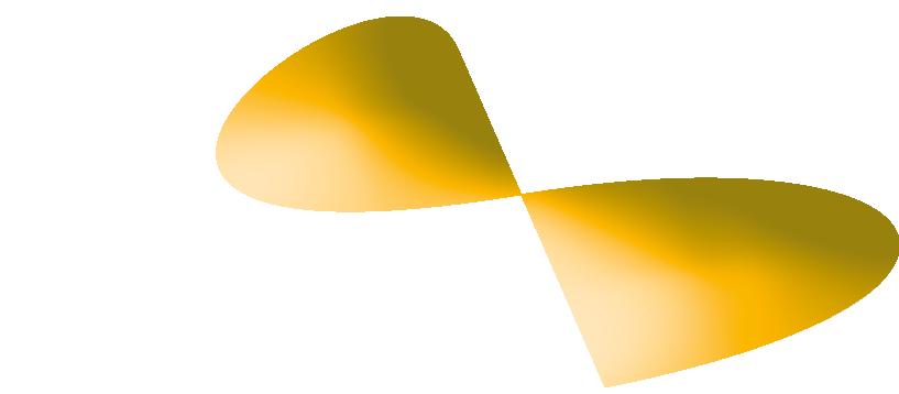 schrausser19_logo
